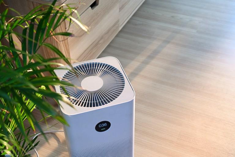部屋の匂いが気になるときに役立つ家電【脱臭機】とは