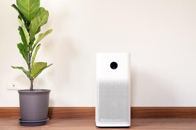 部屋の匂い消しにおすすめの家電【脱臭機】の特徴と選び方