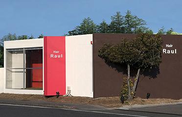 Hair Raul